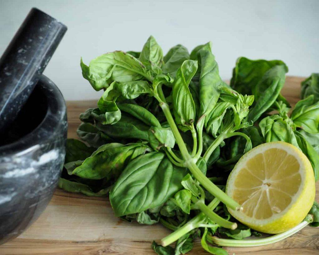 fresh basil and lemon for vegan pesto