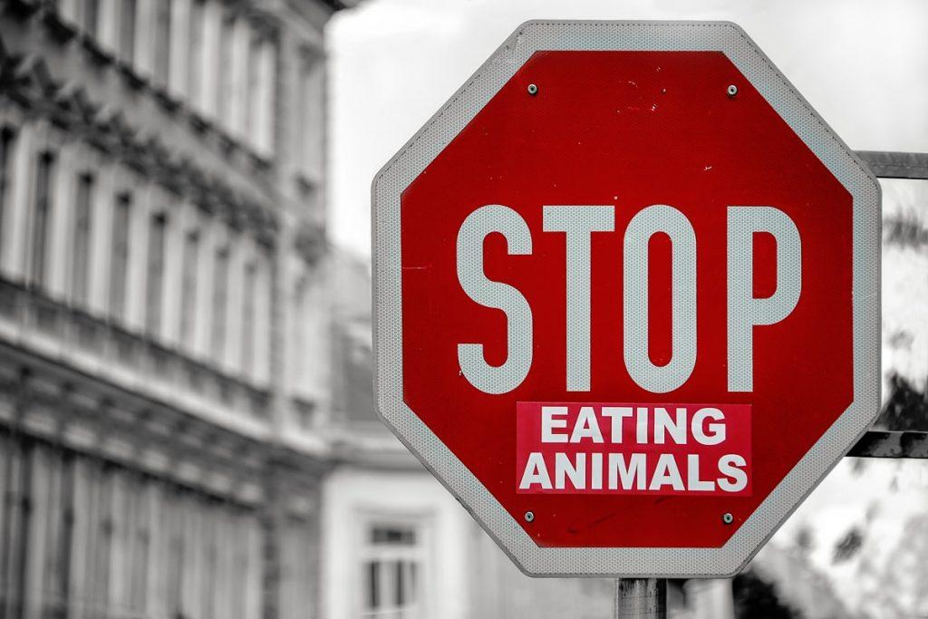 how to slay veganuary