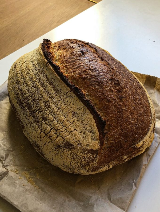 sourdough for beginners